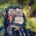 th_crbst_chimpanze